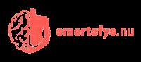 Smertefys.nu Logo